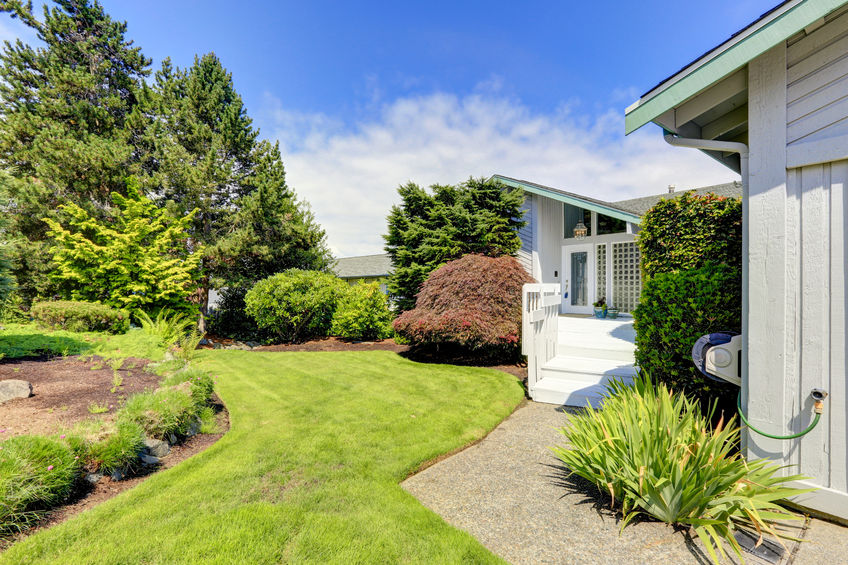 Mowed lawn and garden landscape