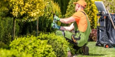 residential gardening